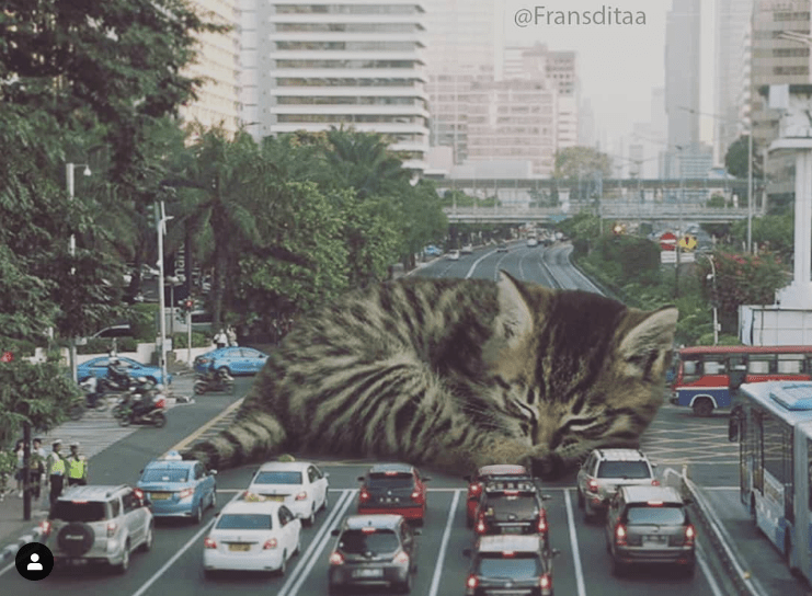 Artist from Indonesia Turns Cats into Giants