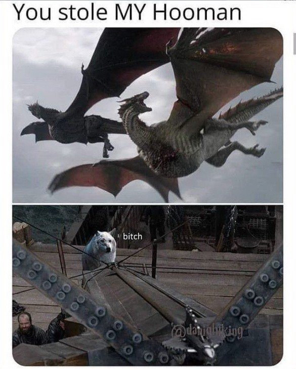 Game of Thrones #funny #meme #comedy